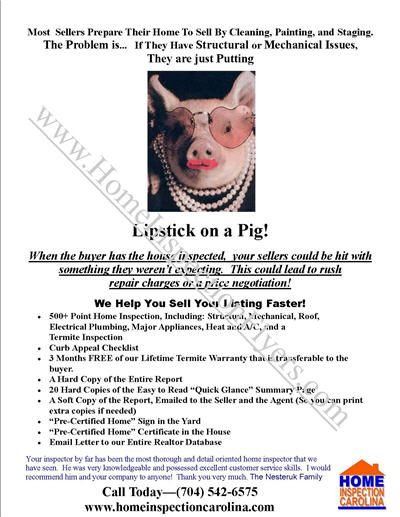 Lipstick On A Pig Sales Flyer