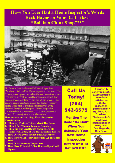 Bull In China Shop Flyer