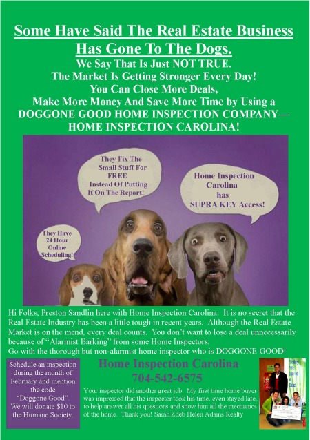Doggone Flyer